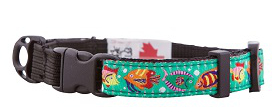 Tropical colored Safety Cat Collar