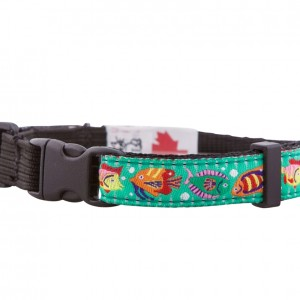 Tropical Fish Cat Collar