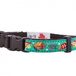 Tropical Fish Cat Collar